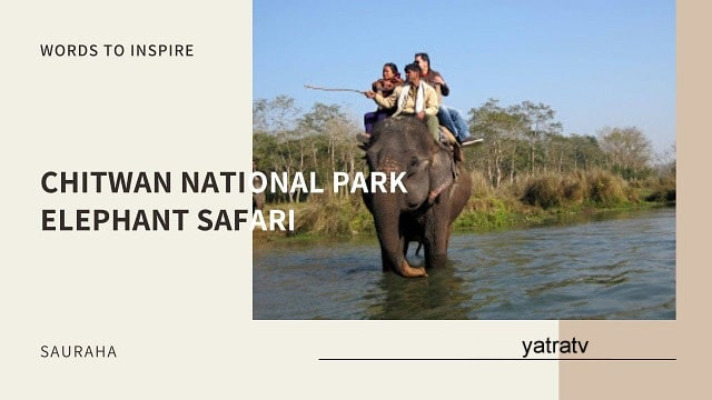 Elephant Safari Chitwan National Park
