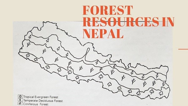 Forest Resources in Nepal